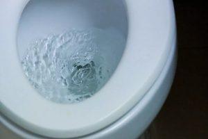 Sedot WC Denpasar