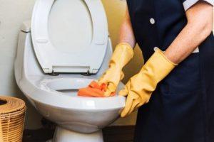 sedot wc banjarmasin