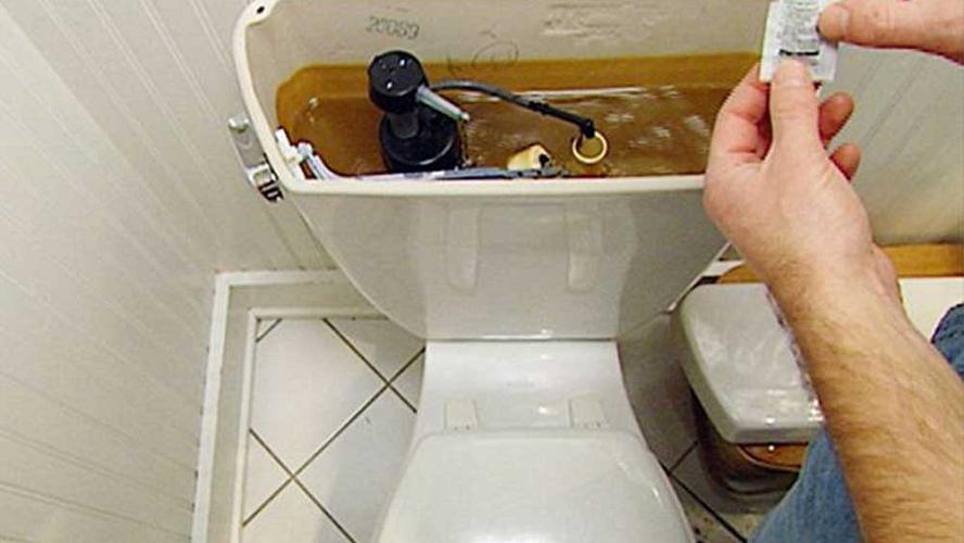 sedot wc gowa